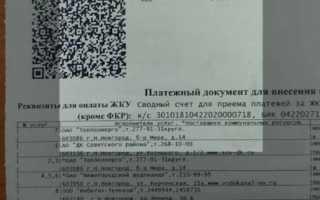 Тиньков предупредил о потерях банков из-за нового сервиса оплаты от ЦБ