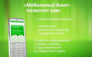 Мобильный банк Билайн Сбербанк